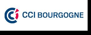 Logo CCI Bourgogne